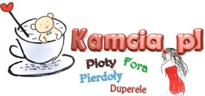 kamcia logo v3 — kopia